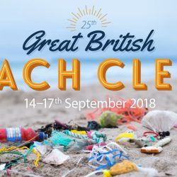 MCS beach clean