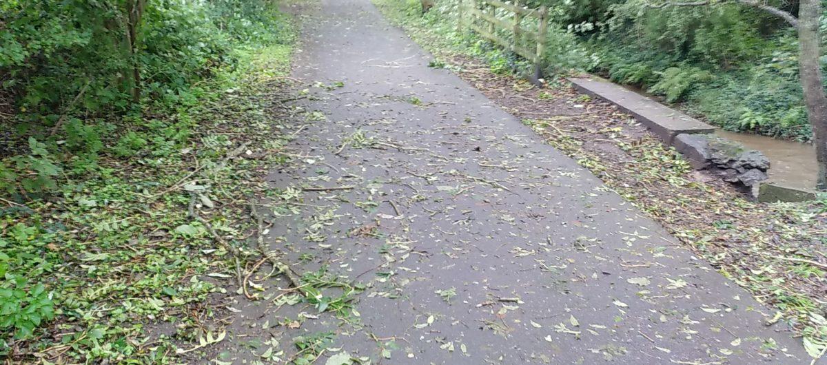 Slippu surface on Tarka Trail