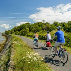 Family cycle along Tarka Trail near Instow
