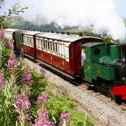 Steam trains at Woody Bay Station